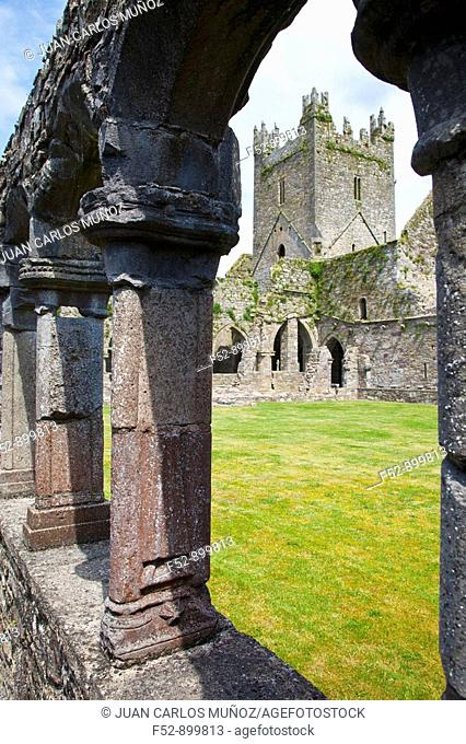 Jerpoint Abbey, Thomastown, Co. Kilkenny, Ireland