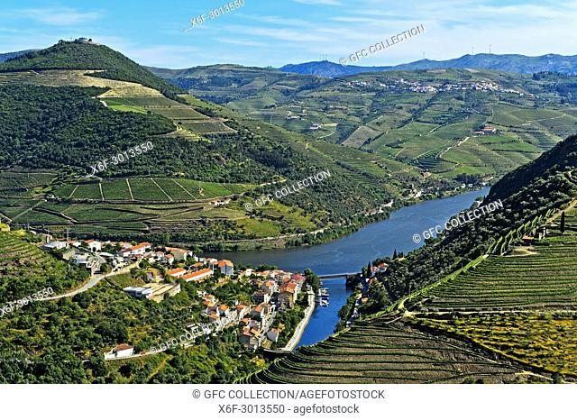 The town of Pinhão surroujnded by terraced vineyards in the Douro Valley, Alto Douro Wine Region, Pinhão, Portugal