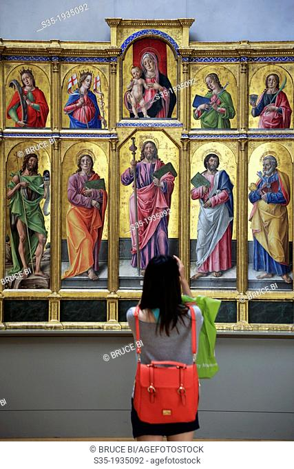 A visitor looking at the altarpiece of Saint James Major, the Madonna and child, and Various Saints by Italian artist Bartolomeo Vivarini