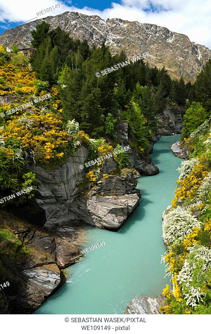 Shotover River, Queenstown, South Island, New Zealand