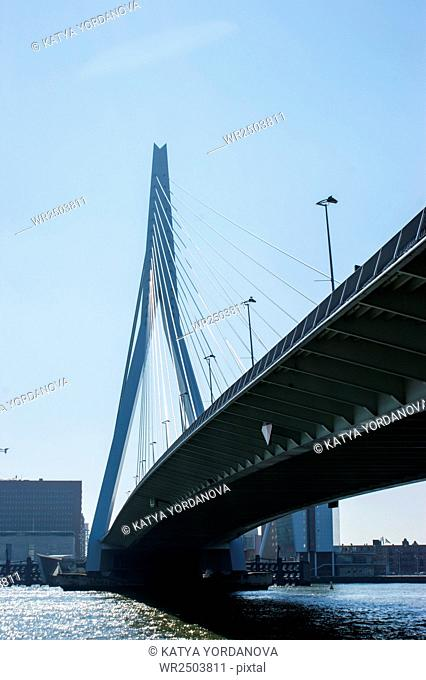 Erasmus bridge over the river Meuse in the Netherlands