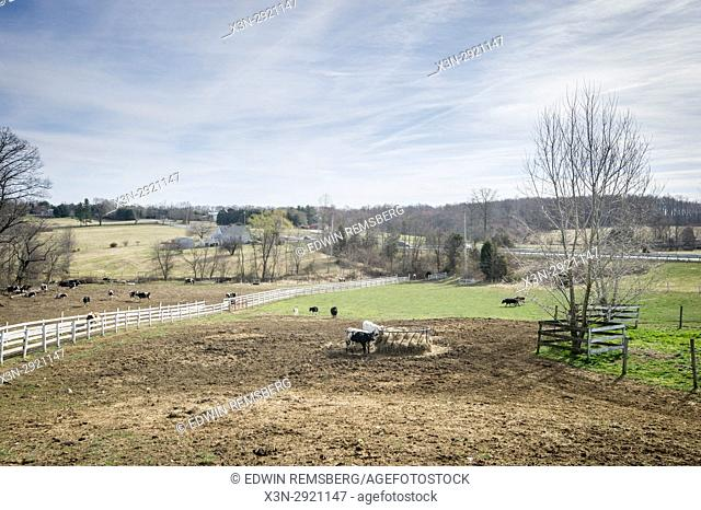 Overlooking desolate scenery of a dairy farm in winter