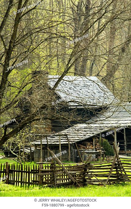 Spring Images, Oconaluftee Area, Great Smoky Mtns National Park, NC