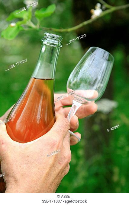 Tasting a bottle of cider