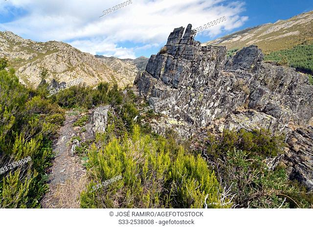 Paradise gorge in the Sierra Norte. Guadalajara. Castilla la Mancha. Spain. Europe