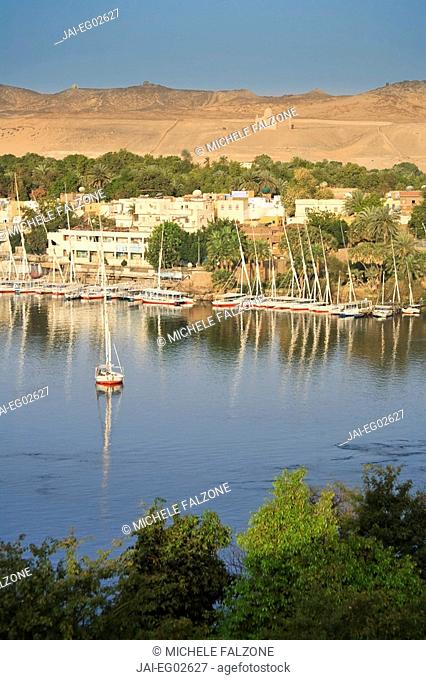 Egypt, Aswan, Feluccas and Nile River ad dawn