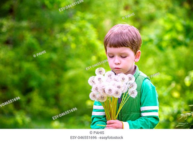 Funny cute kid boy having fun with dandelion flower on warm and sunny summer day. Kid blowing on flower, active outdoors leisure with children