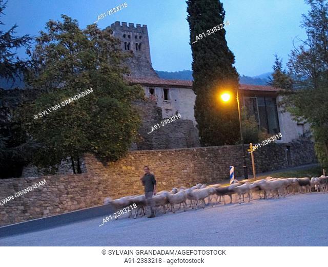 France,Roussillon,Pyrenees-Orientales, Prades, Saint-Michel-de-Cuxa abbey