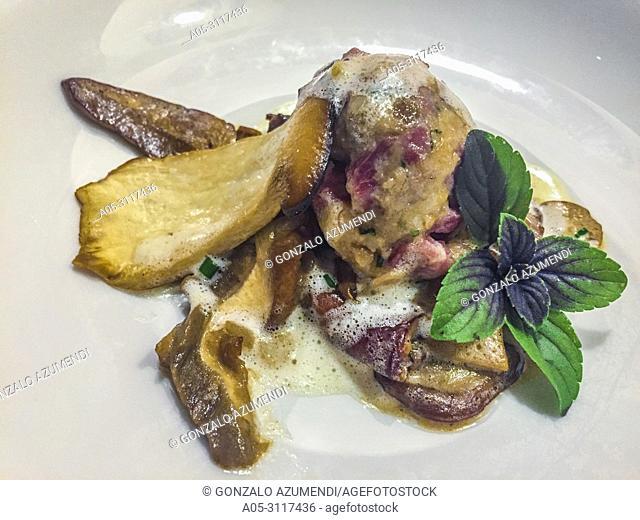 Fresh rock mushrooms with pork knuckle dumplings. Frische Steinpilze mit Schweinkopfsbäckle-knödel. Titisee-Neustadt. Black Forest. Baden Wurttemberg