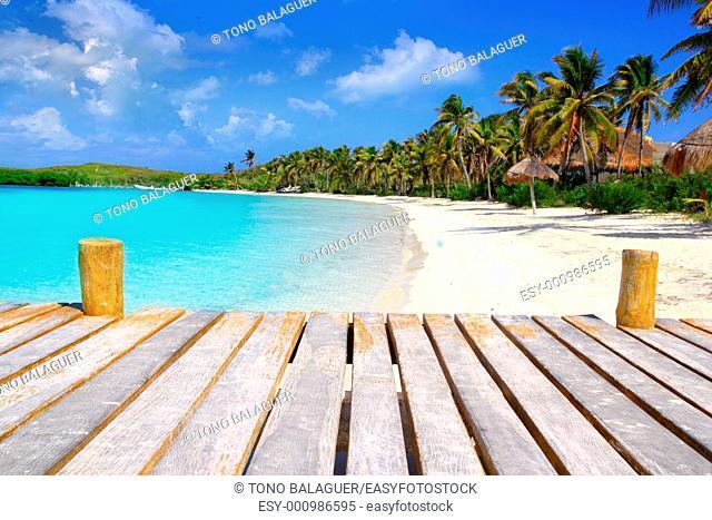 Contoy Island palm trees tropical caribbean beach Mexico