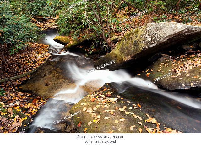 Cedar Rock Falls - Pisgah National Forest - near Brevard, North Carolina, USA