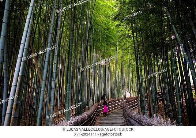 Adashino Nembutsu ji temple , Arashiyama, Kyoto