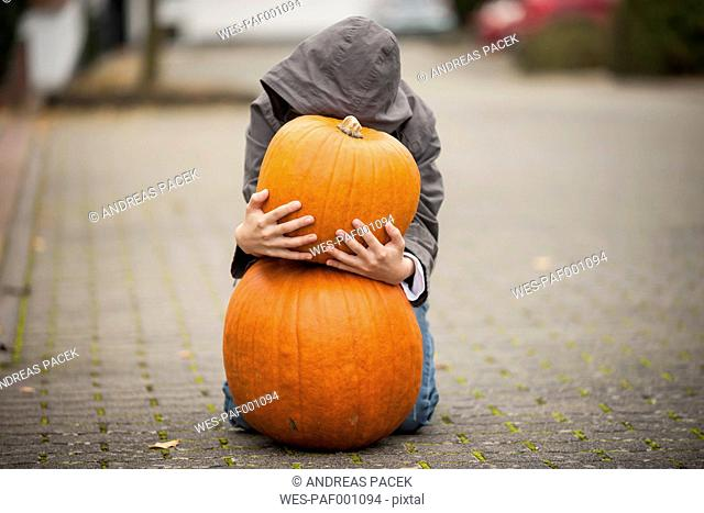 Boy kneeling behind two big pumpkins