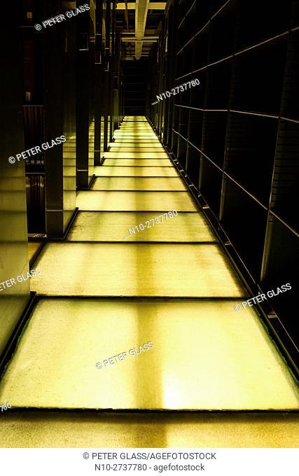 Translucent floor between two library bookshelves