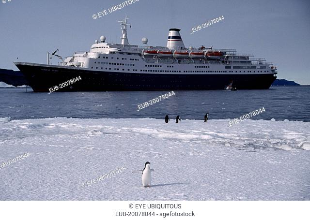 Cape Royds. Tourist ship called Marco Polo on water with Adelie Penguins on the ice in the foreground