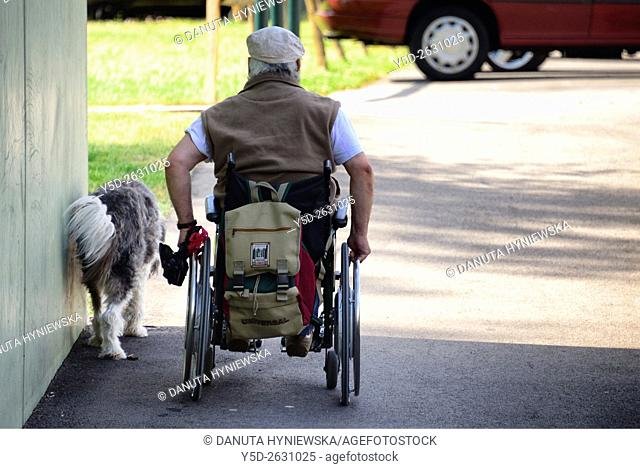 Man in a wheelchair walking the dog, Geneva, Switzerland, Europe
