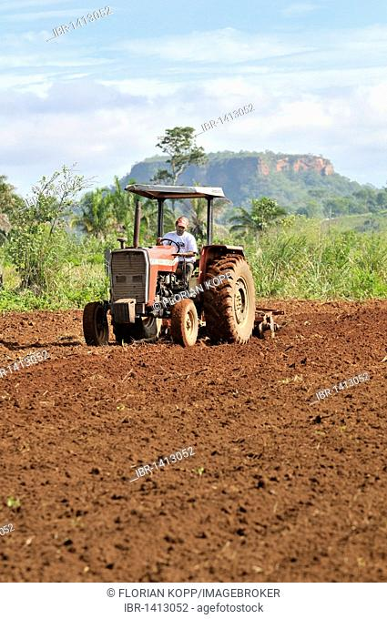 Field work, tilling a field with a tractor, settlement of the Brazilian Landless Workers' Movement Movimento dos Trabalhadores Rurais sem Terra, MST