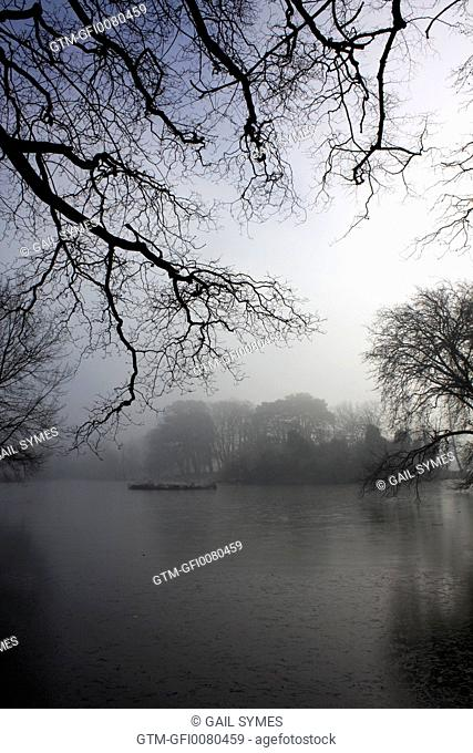 Winter branches over a lake
