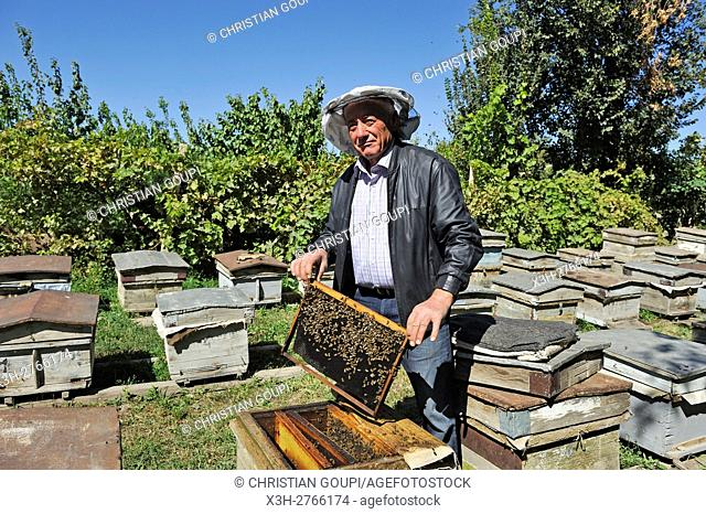 Raznik Mouradyan, beekeeper at Vedi, a village in Ararat plain, Artashat, Armenia, Eurasia
