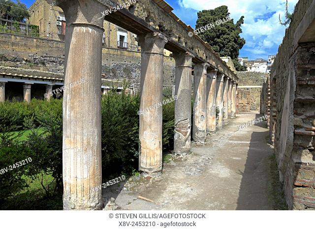 Columns of the House of Argus, Herculaneum, Ercolano, Italy