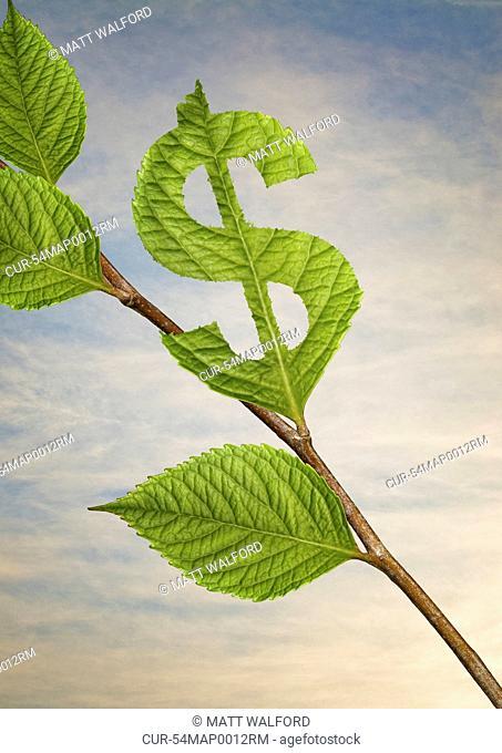 Leaf cut into dollar sign