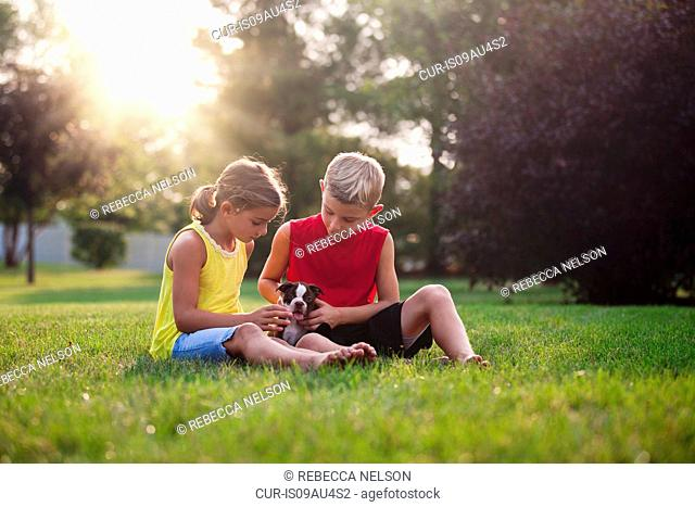 Brother and sister sitting on grass looking down stroking Boston Terrier puppy