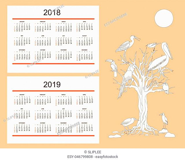 Classic american calendar for wall year 2018 and 2019 with drawn birds. English language. Week starts on Sunday. There are all 12 month. eps 10