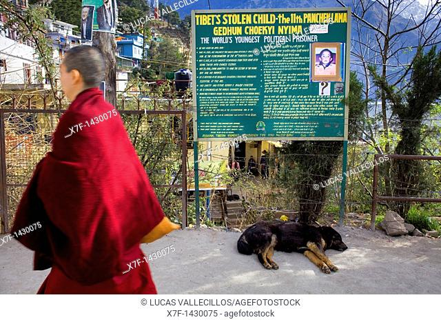 Poster claiming freedom for Panchen Lama in Tsuglagkhang complex  McLeod Ganj, Dharamsala, Himachal Pradesh state, India, Asia