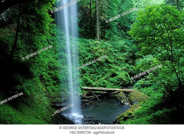 Shellburg Falls, Santiam State Forest, Oregon