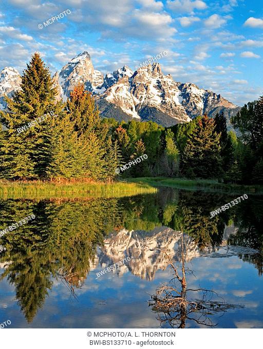 landscape in Jackson Hole, USA, Wyoming, Grand Teton NP
