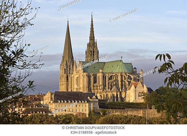 Cathedrale Notre-Dame de Chartres, departement d'Eure-et-Loir, region Centre-Val de Loire, France, Europe/Cathedral of Our Lady of Chartres