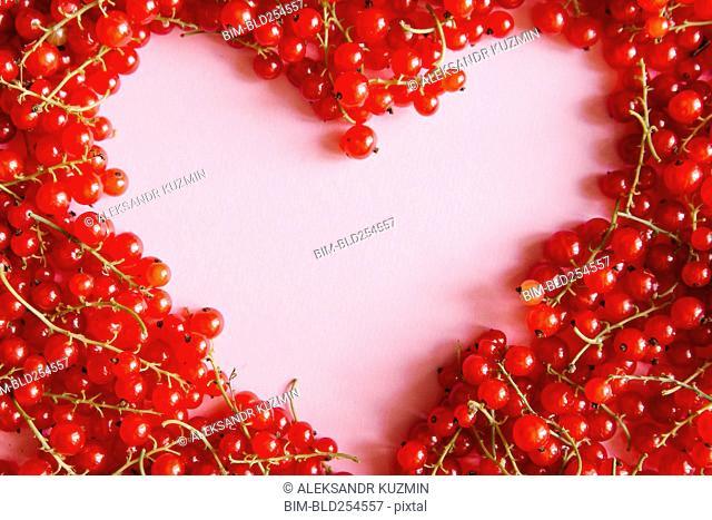 Red berries in heart-shape