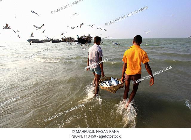 Fishermen carry basket of fishes at the Bay of Bengal CoxÆs Bazar, Bangladesh November 2010