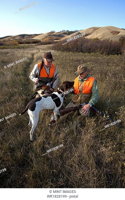 Two men, bird hunters, with shotguns, carrying the day's bag of dead birds, and a spaniel dog