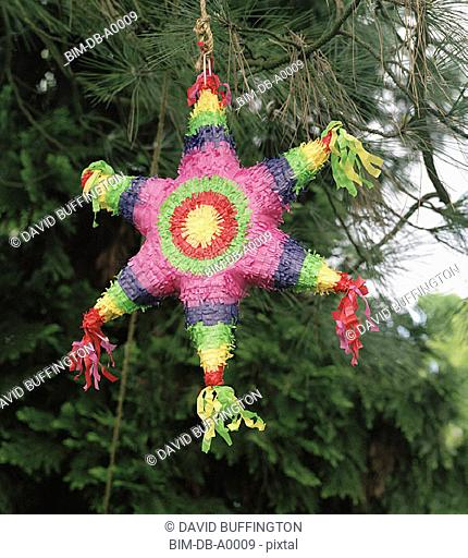Pinata hanging from tree