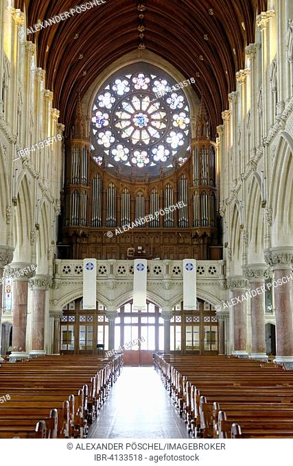 St Colman's Cathedral, organ, rose window, interior, Cobh, Munster, Ireland
