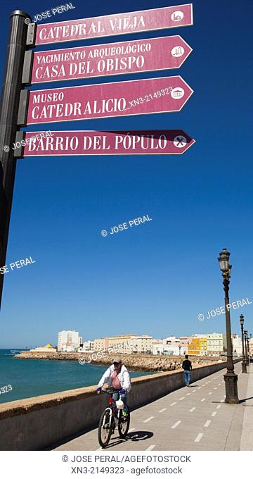 Signals, Promenade, Campo del Sur Avenue, Atlantic Ocean, Cádiz City, Province of Cádiz, The Costa de la Luz, Andalusia, Spain, Europe