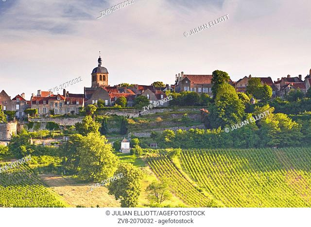 Vineyards below the hilltop village of Vezelay in Burgundy. This particular vineyard is called Le Clos