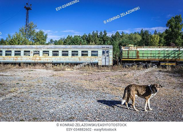 Old train in abandoned Yaniv town railway station, Chernobyl Nuclear Power Plant Zone of Alienation around the nuclear reactor disaster in Ukraine