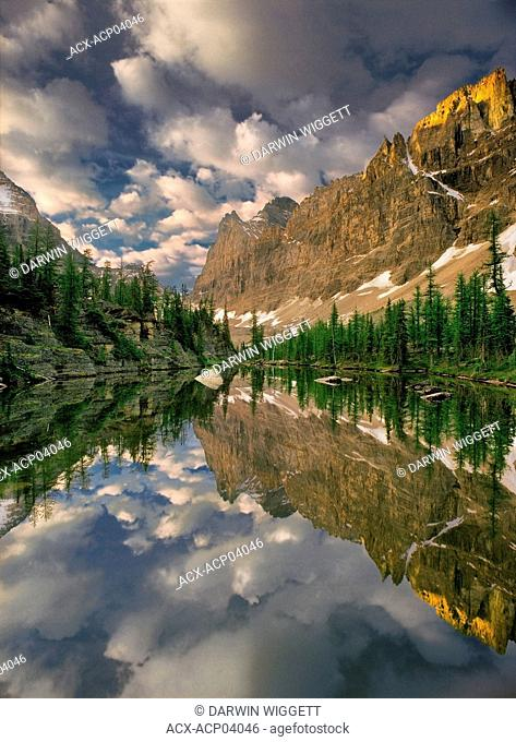 Reflecting pond on the Opabin Plateau, Yoho National Park, British Columbia, Canada