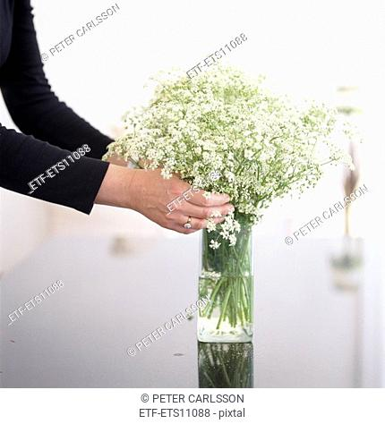 Flowers in a vase Sweden