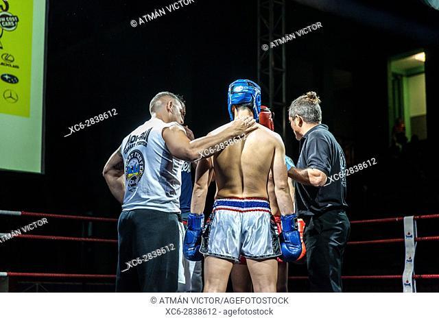 male versus male kickboxing match