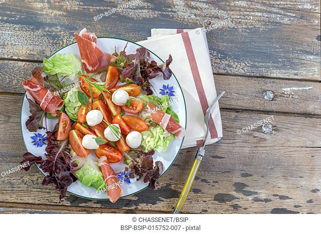 plate basil borage