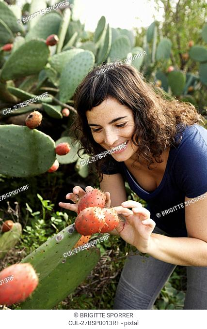 Woman touching cactus