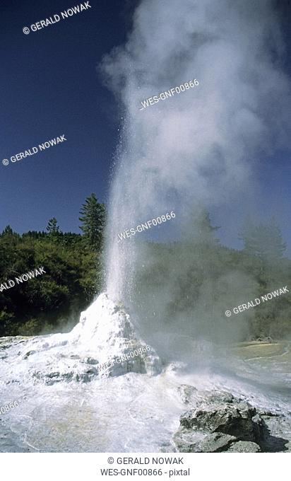 New Zealand, North Island, Rotorua, Steam Rising From Rotorura Geyser