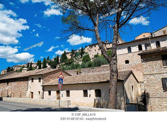 Spello. Umbria. Italy