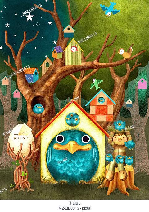 A village of bird houses