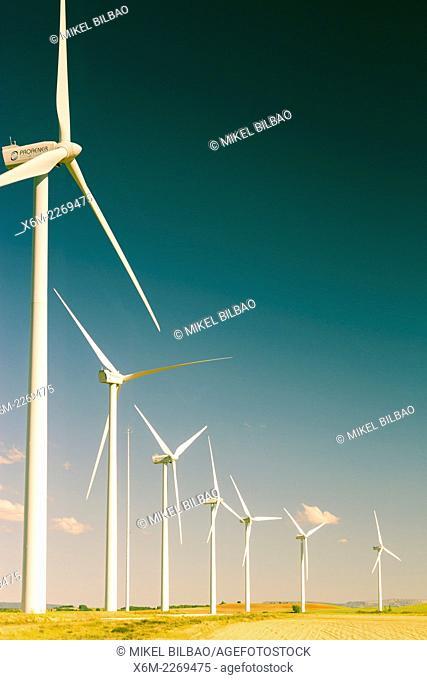 Windmills. Burgos, Spain