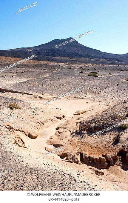Desert landscape with a view of volcano Las Talahijas, Peninsula Jandia, Fuerteventura, Canary Islands, Spain