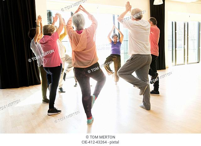 Active seniors exercising, practice yoga tree pose in circle